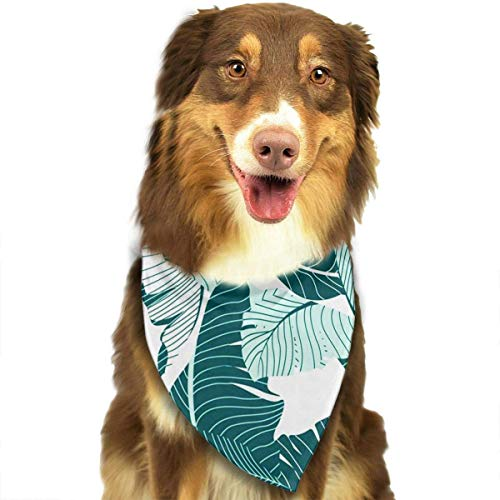 Osmykqe Dog Bandanas Tropical Plants Banana Leaves Adjustable Dog Collar Cat Scarf Puppy Bandans Pet Accessories