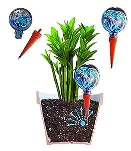 2 gro e plantpal deko glas bew sserung globes bew sserung f r pflanzen spikes aqua spikes. Black Bedroom Furniture Sets. Home Design Ideas