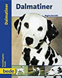 Dalmatiner, Praxisratgeber