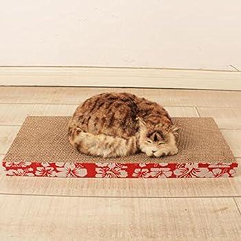 Myyxt Planche à gratter CAT Environnement Ondulé Précédent Maison Canapé Jouets Fournitures , D