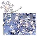 Lunartec LED Lichterkette: Motiv-Lichterkette Snow, 20 Schneeflocken, 3m (LED Weihnachtsbeleuchtung)