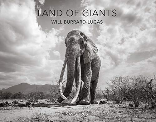Land of Giants - Land