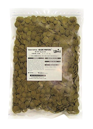 Hikari Algae Wafers [Sng] 1kg 1