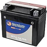 Batería Daelim SQ 125S2freewing 12-BS de BS ácido