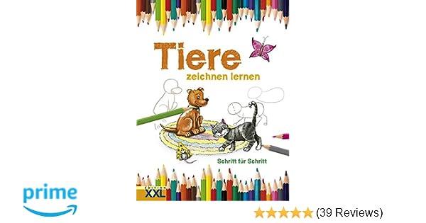 Tiere Zeichnen Lernen Amazon De Ba Cher