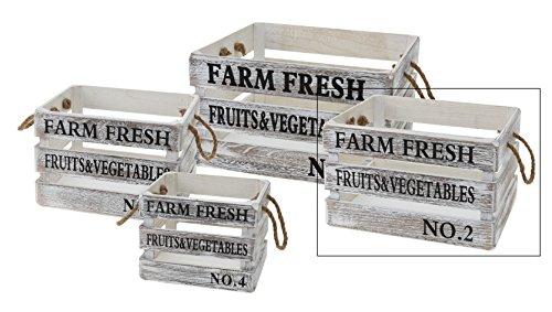 Holzkiste weiß shabby chic 23-41 cm Holz Kiste mit Griffen Obstkiste Deko Landhaus (Mittel-Groß: 21 x 35 x 28 cm)
