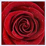 BHXINGMU Benutzerdefinierte Wandbild 3D Rosen Blume Wallpaper Schlafzimmer Wohnzimmer Tv-Kulisse Home Decor Ehe Zimmer Tapeten 150 Cm (H) X 200 Cm (W)