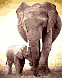 Suntown Malen nach Zahlen 40 x 50cm DIY Leinwand Gemälde für Erwachsene und Kinder mit 3 Bürsten und Acrylfarben - Elefant Vater und Sohn (Nur Leinwand)