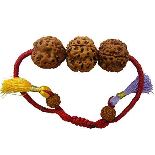 rudraksha-combination-for-career-3712-mukhi-nepal-certified-thread-bracelet