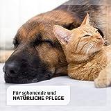 AniForte VET Kamillen-Ohrreiniger 250 ml – Naturprodukt für Tiere - 4