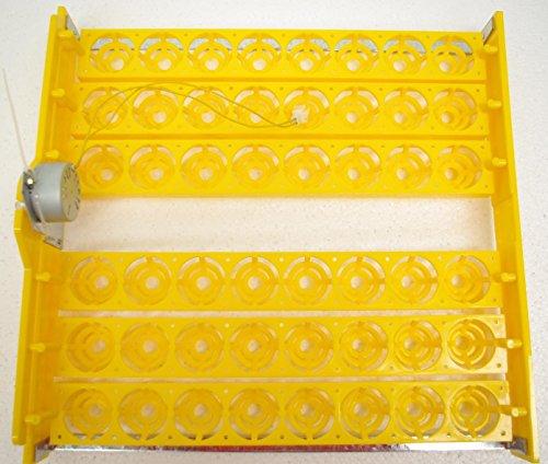 Bandeja para incubadora Janoel de 48 huevos