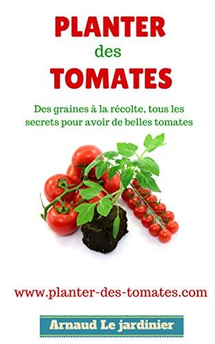 planter-des-tomates-des-graines--la-rcolte-tous-les-secrets-pour-avoir-de-belles-tomates