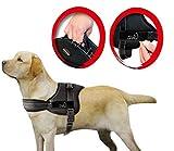 Lifepul(TM) Gilet Chien Harnais réglable sans traction rembourré Ceinture de sécurité confortable pour entraîner/promener les grands chiens – Sans étouffement Sûr Anti-traction (XL)