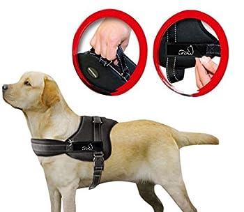 Lifepul(TM) Gilet Chien Harnais réglable sans traction rembourré Ceinture de sécurité confortable pour entraîner/promener les grands chiens ? Sans étouffement Sûr Anti-traction (XL)