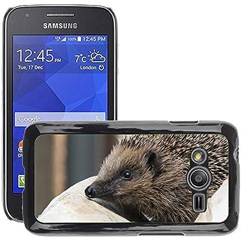 GoGoMobile Hot Style-Custodia rigida per cellulare, a forma di riccio, di M00125186 Spur punta// Galaxy, Samsung Galaxy Ace 4 Ace4/LTE SM-G313F