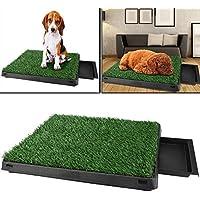 Sailnovo Hundeklo Hunde Toilette Echtem Rasen Welpentoilette Trainingsunterlage für Kleine Hunde Grosse Hunde ältere Hunde Tier WC Indoor 63 x 50x 7(L x B x H) cm (2)