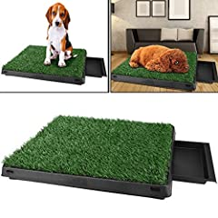 Hundeklo Kunstrasen Gras