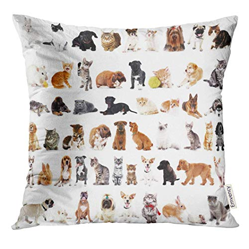 Ntpclsuits Throw Pillow Cover Gray Animal Group of Cute Pets White Domestic Decorative Pillow Case Home Decor Square 18x18 Inches Pillowcase