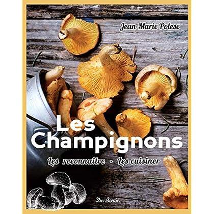 Les champignons : Les reconnaitre, les cuisiner