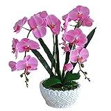 Snatchcz Bonsai Gefälschte Blume in Oval Topf Künstliche Pflanze Büro Hausgarten Dekoration