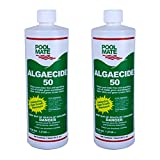 Best Algaecide For Pools - Pool Mate 1-2150-02 Algaecide 50 Swimming Pool Algaecide Review