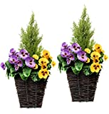 GreenBrokers Zuchtset Künstliche Terrasse Pflanzgefäßen–Lila & Gelb Blumen & Konifere/Zeder Formschnitt