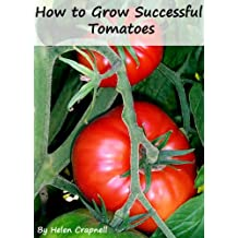 How to Grow Successful Tomatoes