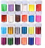 Iseebiz Polvere di Glitter a 20g*24 Colori Decorazione Facciale,Decorazione delle Unghie Artistiche, Fiori Decorativi e Vari Mestieri