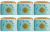 Sal de Ibiza Fleur-de-Sel im Keramiktopf - mini - 6x 28,5 g