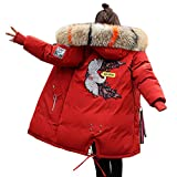 Minetom Damen Winterjacke Mantel Daunenjacke Lang Parka Jacke Winter Outwear Embroidered Fashion Pattern Wärme Mit Fellkapuze Rot 02 DE 48