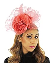 0062f7ed Women's Accessories - Fascinators & Headpieces | Best Offers and ...