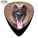 Big Face Belgian Malinois Celluloid Guitar Picks 12 Pack For Electric Acoustic Guitar