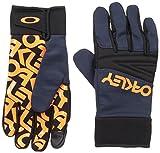 Oakley Herren Factory Park Gloves, Fathom, L