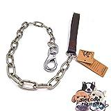 petfun Royal Style Echt Leder mit Edelstahl Qualität anti-chewing Hundeleine, schwarz und braun