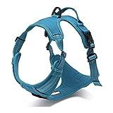 PETTOM Hundegeschirr Weiche Mesh Atmungsaktiv Einstellbare 3M Reflektierende Nylon Geschirr für Kleine Mittlere Große Hunde ((XS:Chest Size:33-43 cm), Blau)