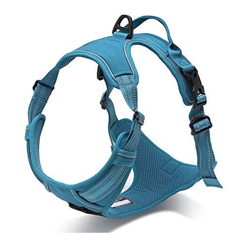 Nylon-mesh-material (PETTOM Hundegeschirr Weiche Mesh Atmungsaktiv Einstellbare Reflektierende Nylon Geschirr für Kleine Mittlere Große Hunde)