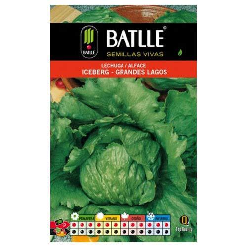 Portal Cool Batlle der Gemüsesamen - Salat Batavia Grandes Lagos California (6G)