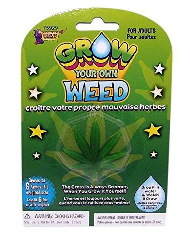 croissance-votre-mauvaises-herbes-propres