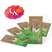 PRETTY KITTY 5X Premium Katzengras Samen - 5 Beutel mit 25 g