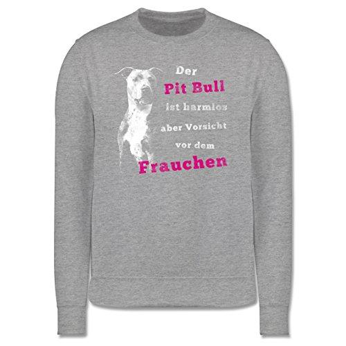 Hunde - Der Pit Bull ist harmlos aber Vorsicht vor dem Frauchen - Herren Premium Pullover Grau Meliert