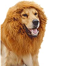 Tinksky Mignon animal chien Déguisements Costume Lion Mane perruque Neckchief collier pour Halloween partie