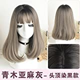 WIAGHUAS Perücke Frauen langes Haar glattes Haar Liu Haitou natürliche realistische flauschige Gesicht graue Perücke,Leinen grau