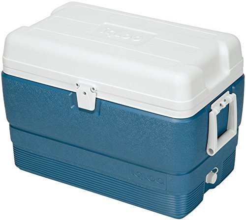 igloo-maxcold-cooler-50-quart-icy-blue-by-igloo-products-corp