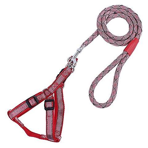 unihubys haute qualité pour l'entraînement Laisse pour chien Laisse corde d'escalade pour chien Montagne Tour Laisse