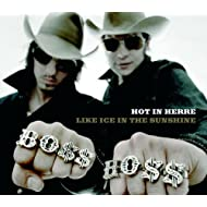 Hot In Herre/ Like Ice In The Sunshine (Doppel-A-Seite)
