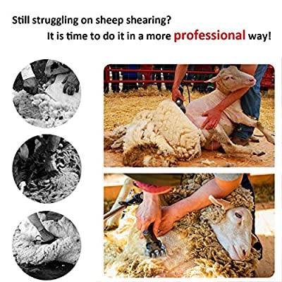 650W Sheep Shears Electric Clippers, Professional Electric Sheep Shears Goats Shears fo Farm Livestock Hair Fur Grooming,6 Speed 13 Teeth from KYLINDRE