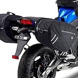 Givi TE266, bauletti porta-accessori laterali per moto