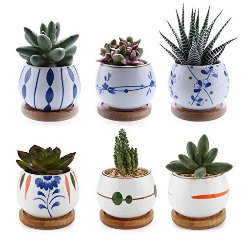 ComSaf Vaso per Pianta Grassa Vaso di Piante con Vassoio di bambù Bianco 7CM Ceramica Set di 6, Fioriere di Cactus Contenitori Vasi di Fiori Decorativo del Desktop Davanzale Bonsai