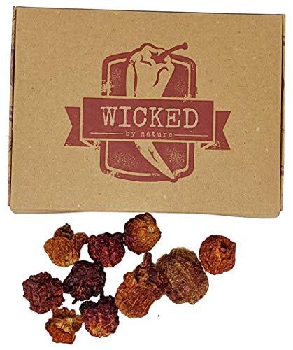 Schärfste Chili der Welt Geschenkbox - Carolina Reaper Getrocknete Früchte - Perfektes Geschenk für Wagemutige - Ghost Pepper '