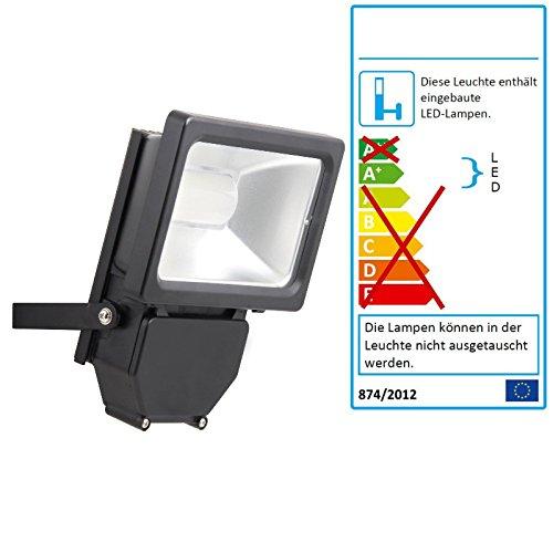 LED Phare, 10 W, 4000 K blanc chaud, robuste noir, classe d'efficacité énergétique : A + +
